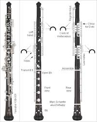 Woodwind Fingerings Other Sciences Science Forums