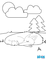 Small Picture FOREST ANIMALS coloring pages 37 all the Wild ANIMALS of the