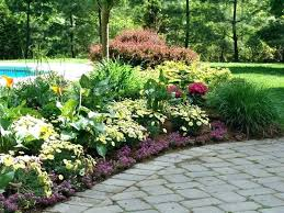 Image result for perennial garden