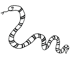 cute snake coloring page.  Cute Snake Coloring Pages Black Mamba To  Print Panda Free Images Cute   With Cute Snake Coloring Page E