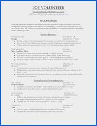 Volunteer Work Resume Example Awesome Resume Template Examples
