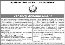 jobs for coordinator consultants required in sindh judicial academy