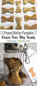 Country Kitchen Dog Treats Easy Homemade Peanut Butter Pumpkin Grain Free Dog Treats