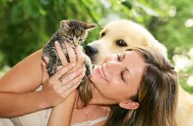 Dog People vs. Cat People: Who's More Intelligent? | Live Science