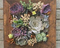 on live succulent wall art with succulent wall planter etsy