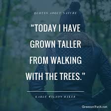 World Beauty Quotes Best of 24 Best Quotes About Nature Images On Pinterest Wildlife Animais