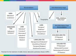 Asthma And Copd Medications Chart Copd New Drugs New Devices