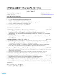 Front Desk Resume Example Hotel Front Desk Clerk Resume Examples