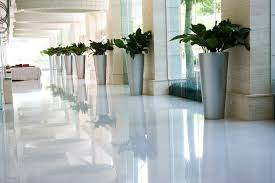 modern office plants. Samples Of Our Work Modern Office Plants L