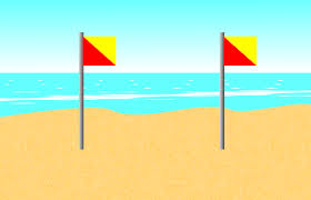 Image result for swim between the flags