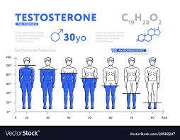 Decreasing Chart Of Male Hormone On White