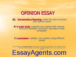 Opinion Essay Samples How To Write An Opinion Essay Sample Opinion Paper Essayagents Com
