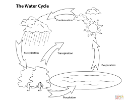 Simple Water Cycle Coloring Page Free Printable Coloring Pages