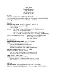 Things To Put On A Resume Amazing What To Put In A Resumes Kenicandlecomfortzone