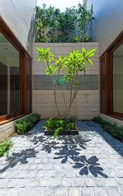 patios interiores isla plantas oasis