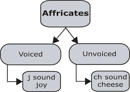 Although it is an international system, it derives most of its symbols from latin and greek. Introduction To Affricates Pronuncian American English Pronunciation