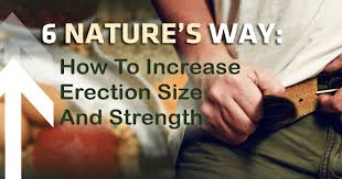 increase size how to increase erection size in 6 simply smart steps buyextenze
