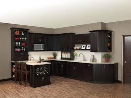 Merillat Kitchen Cabinet Doors Furniture Consideration Merillat Cabinet Hinge Adjustment