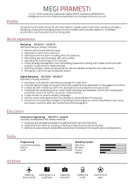 Digital Resume Templates Resume Examples By Real People Digital Marketing Resume