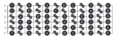 Bass Guitar Fretboard Notes Chart How To Find Memorise The Notes On The Guitar Fretboard