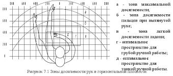 Реферат Рабочее место программиста раздел диплома по БЖД  Оптимальная зона часть моторного поля рабочего места ограниченного дугами описываемыми предплечьями при движении в локтевых суставах с опорой в точке