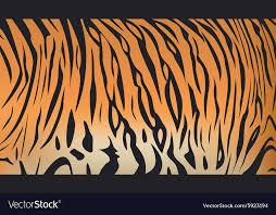 Tiger Pattern Custom Bengal Tiger Stripe Pattern Royalty Free Vector Image