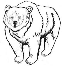 Small Picture Coloring Page Bear Coloring Free Coloring Pages