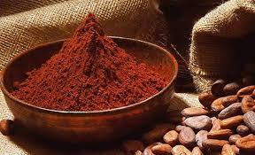 Risultati immagini per cacao amaro