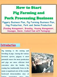 Pig Farming Business Plan Business Plan For Pig Farming Module Poultry Production Training