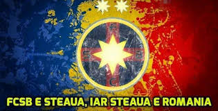 Image result for romania ros-albastra