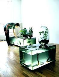 office desk fish tank. Office Fish Tank Desktop Desk Large Size Of For Ideas 5 E