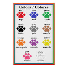 Bilingual Paw Print Color Chart Poster