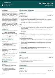 Examples Of 2 Page Resumes Magnificent Sales Resume Examples And Samples