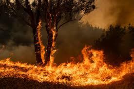 Blazzes Hair Design Thirroul Fires Threaten Australian Towns That Have Already Burned