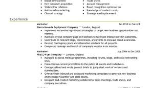 Great Power Resume Words Pictures Inspiration Resume Ideas