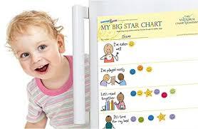 My Big Star Chart My Big Star Reward Chart 2yrs Award Winning Great