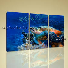on sea turtle canvas wall art with animals sea turtle multi canvas wall art picture print underwater framed