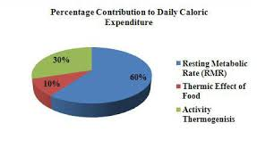 Exercise Expenditure Chart How Many Calories Should I Have To Lose Or Gain Weight