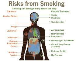 why don t governments ban cigarettes and other tobacco products if measures taken by government