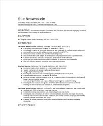 Technical Resume Fascinating Technical Resume Template Download