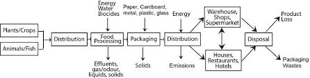 Simplified Flow Sheet Of The Supply Chain Of The Food
