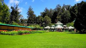 photo of ooty botanical gardens vannattai ooty tamil nadu india by priya
