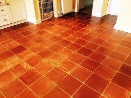 Terracotta Floor Tiles Kitchen Conservatory Floor Tiles Images Interior Design Ideas Home Bunch