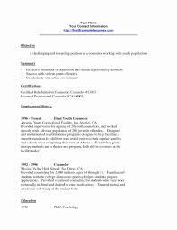 Camp Counselor Resume Awesome School Counselor Resume Example School