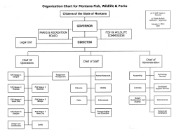 Org Chart Rules Organizational Chart Rules How To Pronounce Indices
