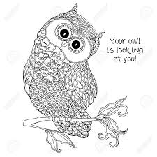100 Cute Owl Coloring Pages For Kids Hd Wallpapers Rainbowrain