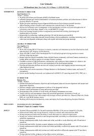 It Director Resume Sample IT Director Resume Samples Velvet Jobs 2