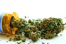 marijuana addressing the issue of its legalisation caribbean marijuana addressing the issue of its legalisation