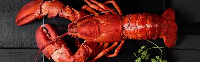 Its Officially Lobster Season Fish And Seafood