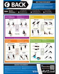 Image Result For Iron Gym Pull Up Bar Workout Chart Back